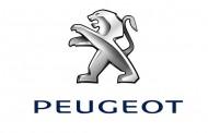 Mehmet Anamur Peugeot Satış Direktörü oldu